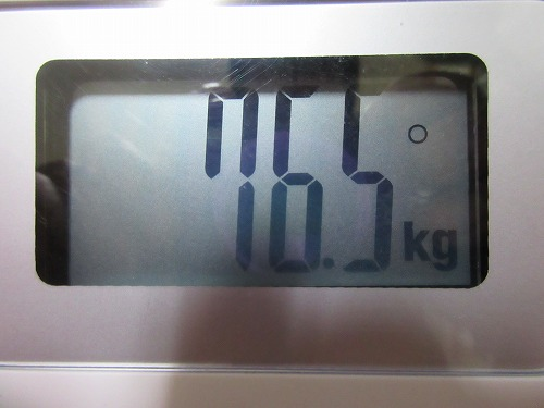diet-log26