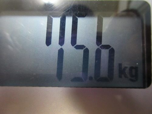 diet-log32