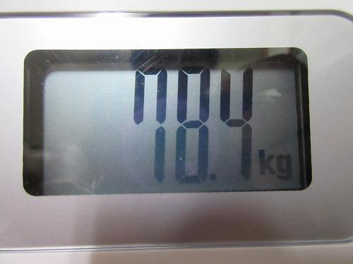 diet-log100