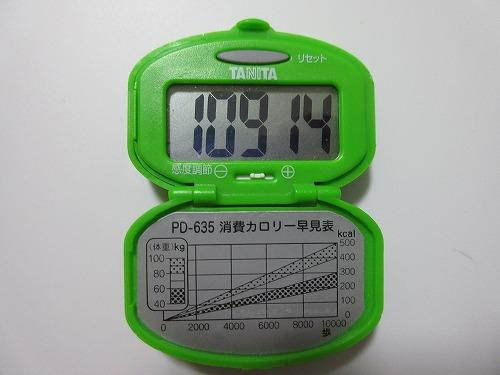 diet-log103