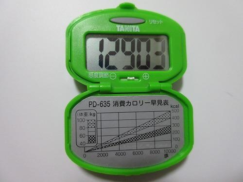 diet-log105