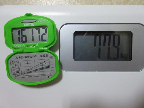 diet-log113