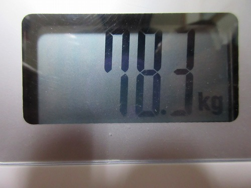 diet-log120