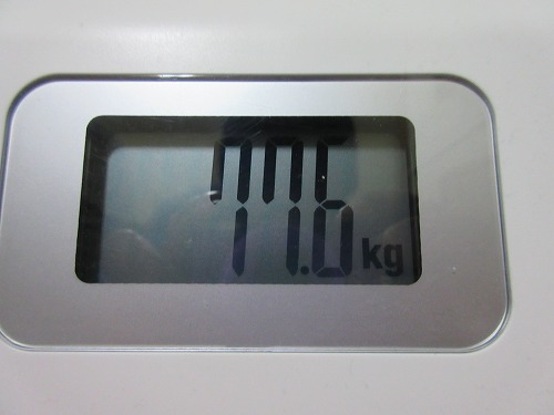 diet-log.info